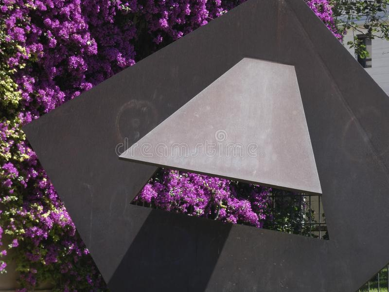 Blumen der rötlichen Farbe, der Kriechpflanzenanlage lizenzfreie stockfotos
