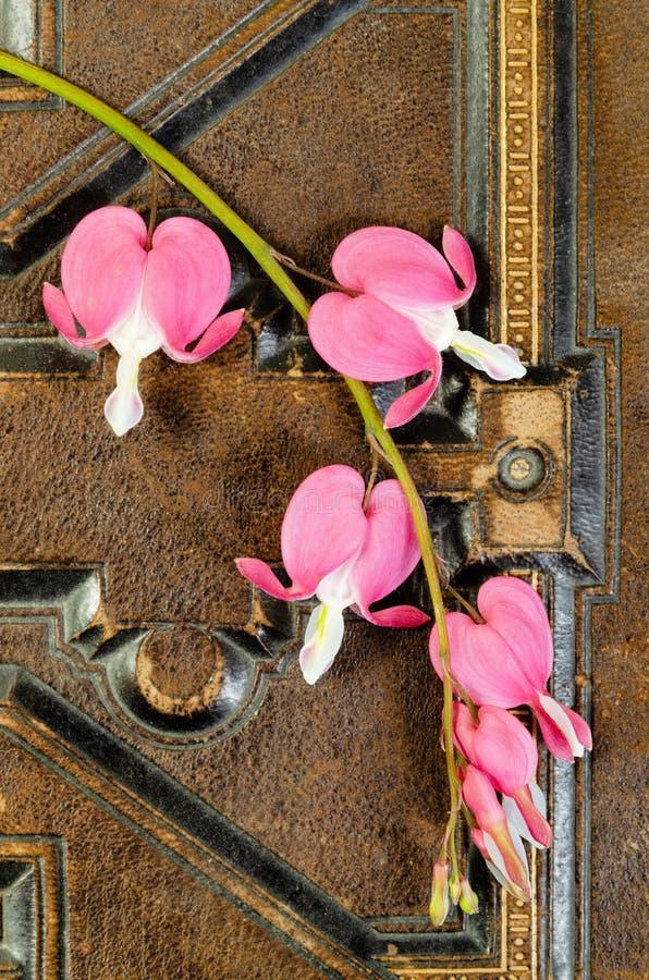 Blumen des blutenden Herzens auf Weinlese-Buch stockfotos