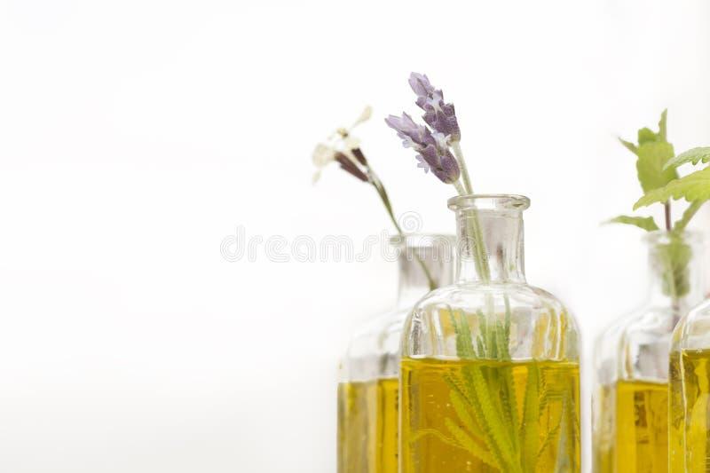 Blumen des wesentlichen Schmieröls und des Lavendels lizenzfreies stockfoto