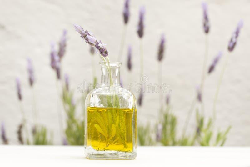 Blumen des wesentlichen Schmieröls und des Lavendels stockfoto