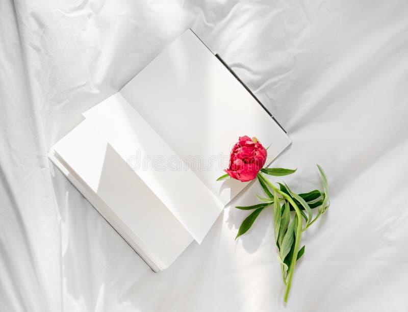 Blumen, die auf offenem Buch im Bett bleiben Romantischer guter Morgen Beschneidungspfad eingeschlossen stockfotografie