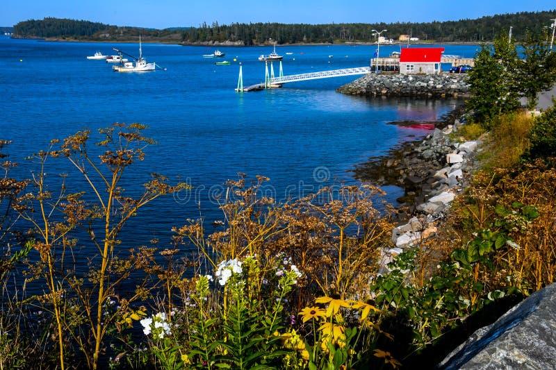 Blumen durch die Straße in Lubec, Maine stockfotos