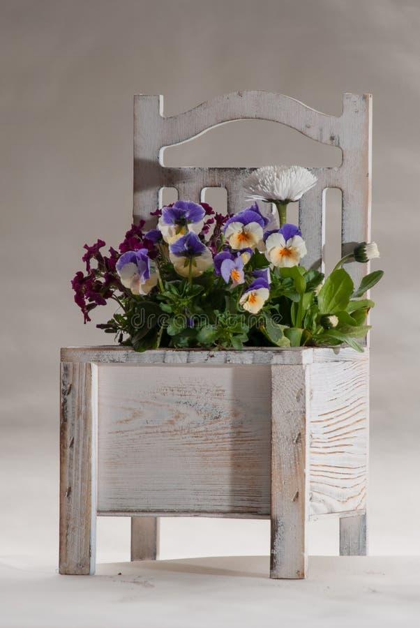 Blumen in einem alten weißen Stuhl lizenzfreies stockfoto