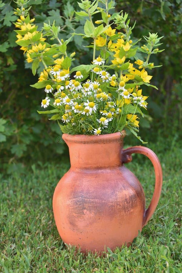 Blumen in einem Krug lizenzfreie stockfotos