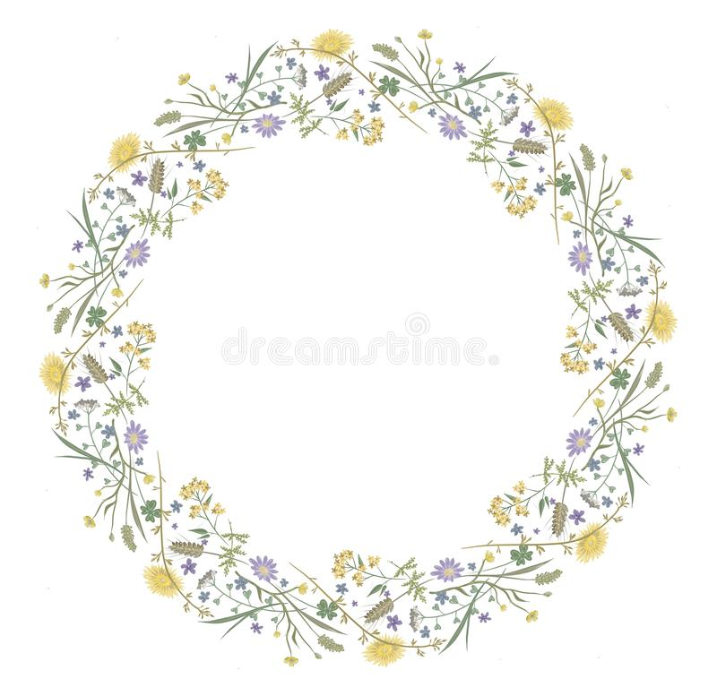 Blumen entspringen runde Rahmenmit blumennatur vektor abbildung