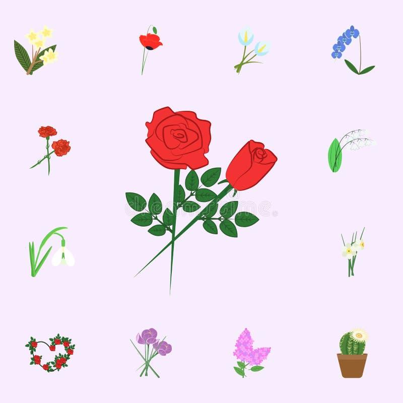 Blumen-Farbikone der Rosen rote Blumenikonen-Universalsatz für Netz und Mobile stock abbildung