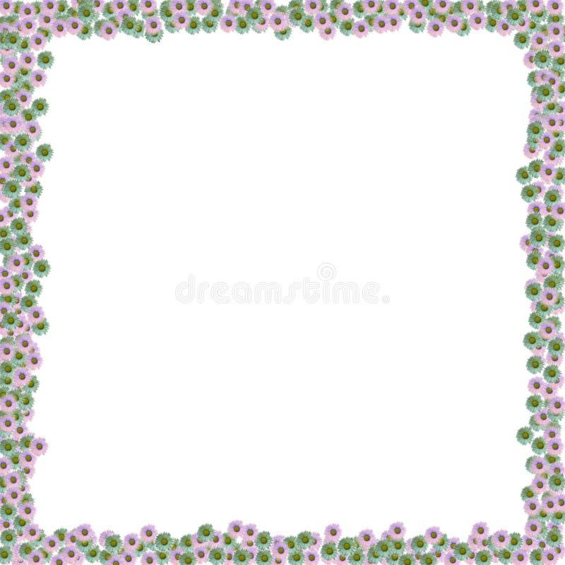 Blumen-Feld lizenzfreie stockbilder