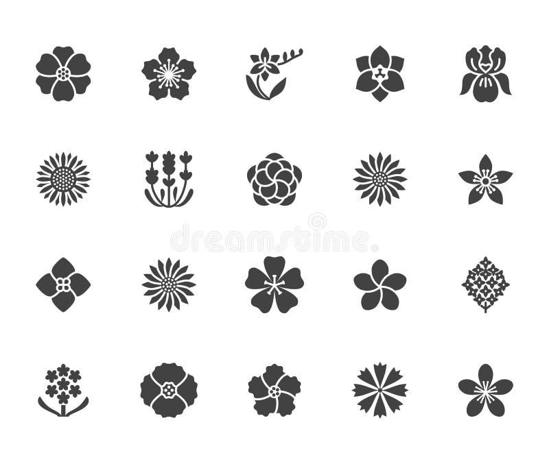 Blumen flache Glyphikonen Schöne Gartenpflanzen - Sonnenblume, Mohnblume, Kirschblume, Lavendel, Gerbera, Plumeria stock abbildung