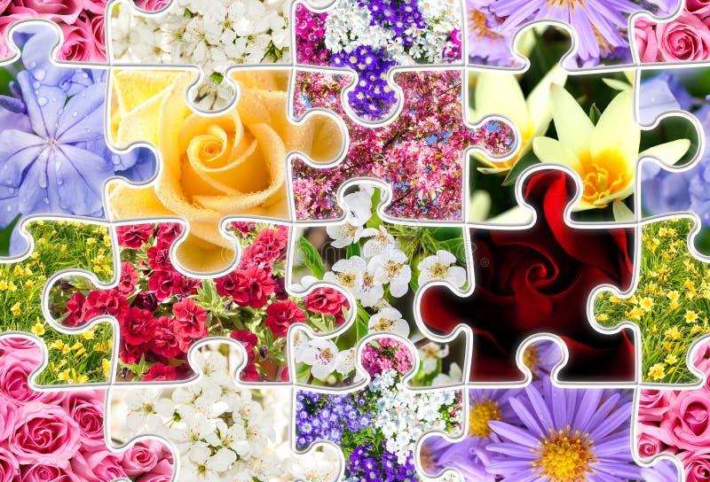 Blumen-Frühjahrskollektions-nahtloses Puzzlespiel stockbild