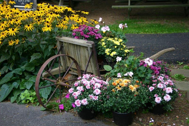 Blumen-Garten-Bildschirmanzeige mit Schubkarre lizenzfreie stockfotos