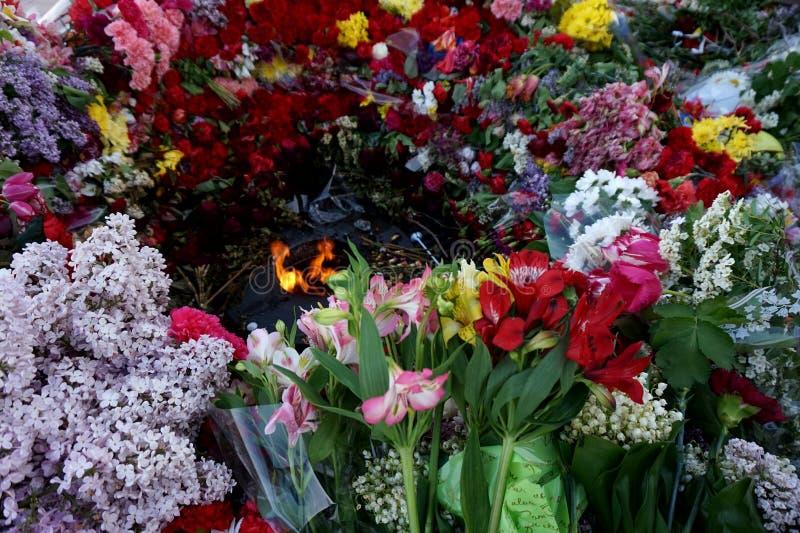 Blumen geholt von den Leuten zum brennendes ` ewigen Feuer ` auf Victory Day über Faschismus, am 9. Mai stockfotos