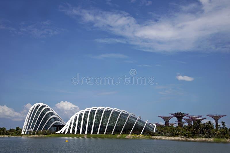 Blumen-Haube und Wolken-Haube, Singapur stockbilder