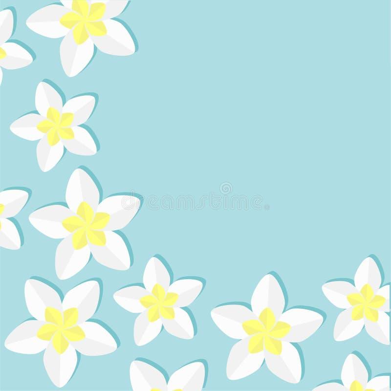 Blumen-Ikonensatz des Plumeria tropischer Frangipani Hawaii, Bali Anlagenblumen-Rahmenecke Hintergrund für eine Einladungskarte o vektor abbildung