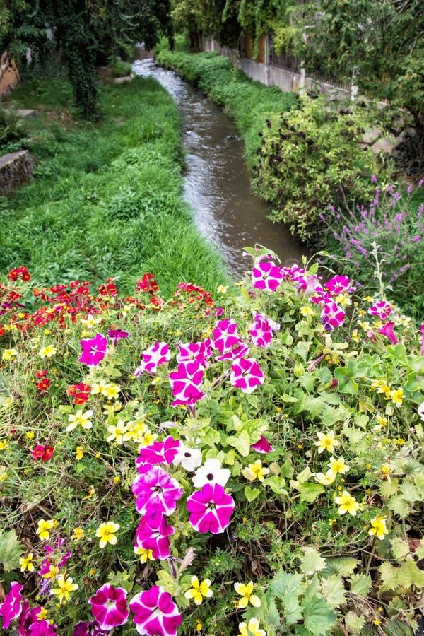 Blumen im Bett und Nebenfluss in der Stadt parken, Schwabach, Deutschland stockfotos