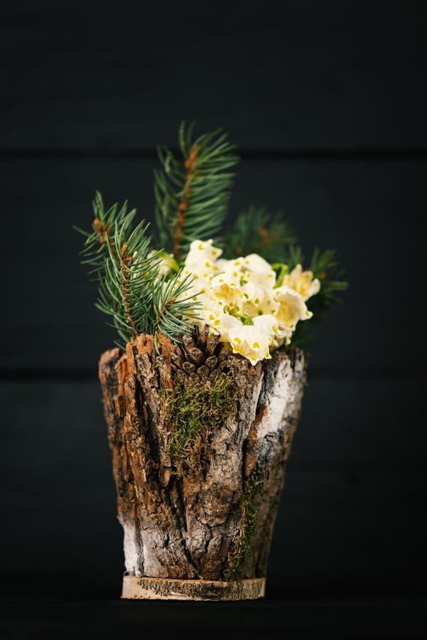 Blumen im dekorativen Vase Leucojum-vernum ist die erste Frühlingsschneeflocke Thema des Tages der internationalen Frauen stockfotografie