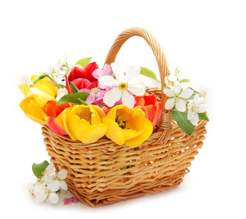 Blumen im Korb stockfoto