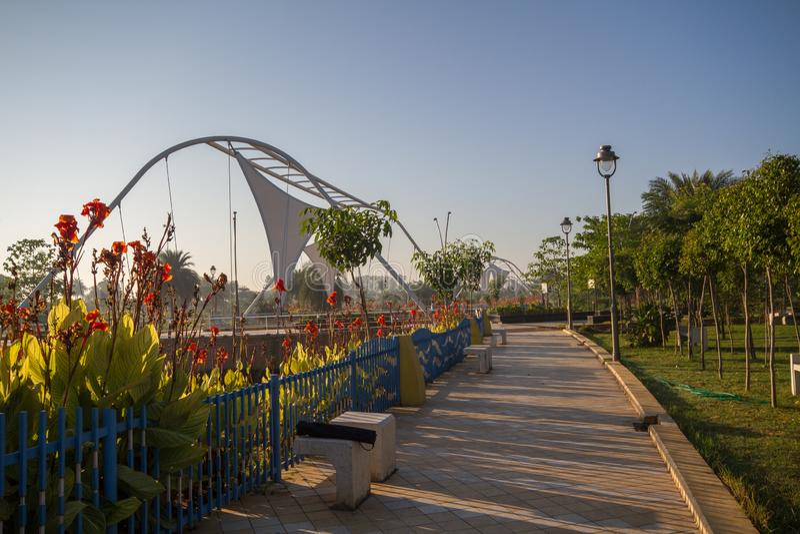 Blumen im regionalen Park in Indore Indien stockfotografie