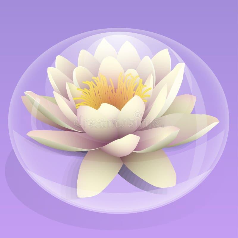 Blumen-Lilie in einem Wassertropfen stockbild