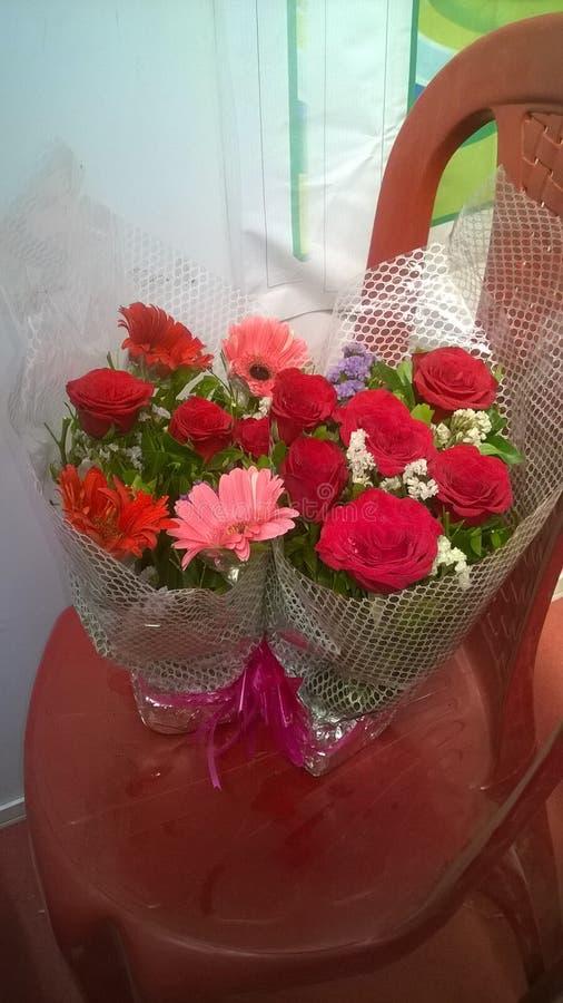 Blumen meiner Stimmungen stockfotos