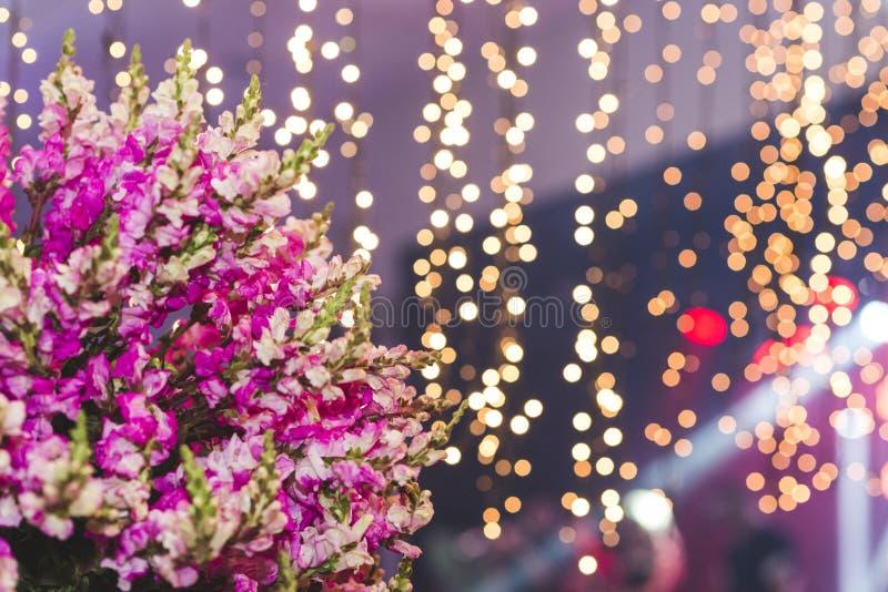 Blumen mit unscharfem Weihnachtslichthintergrund Blured Weihnachtsleuchte stockbild