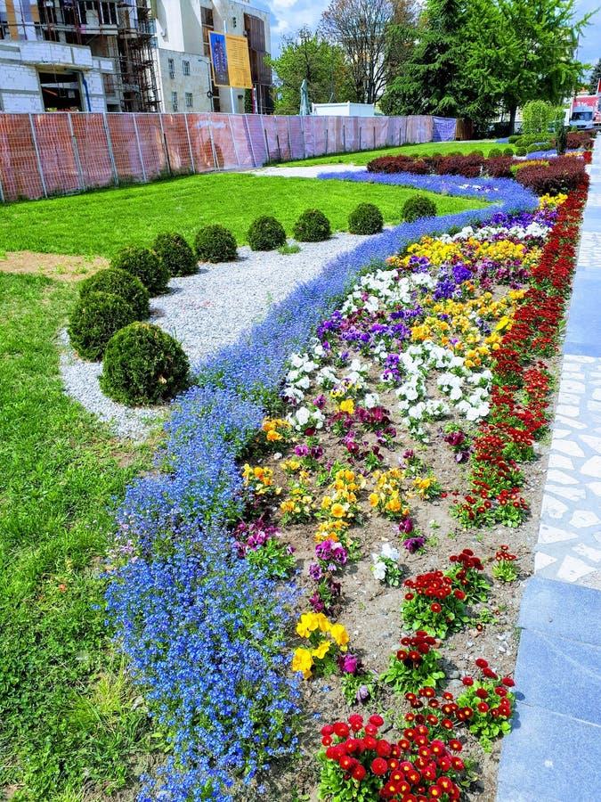 Blumen-Quadrat nahe bei dem Monument zu den Kosovo-Helden von KruÅ-¡ evac lizenzfreie stockfotos