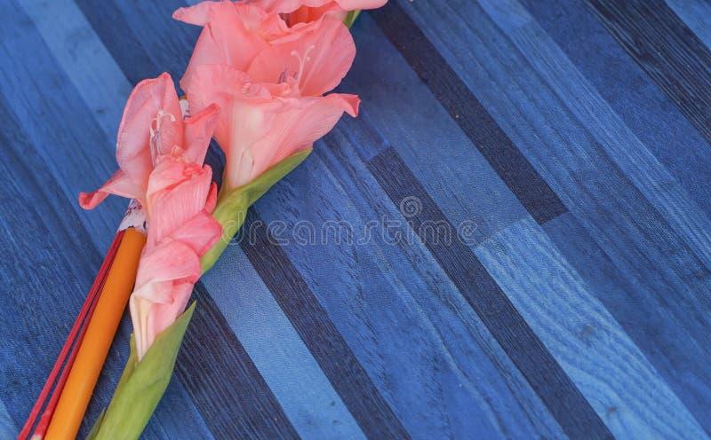 Blumen, Räucherstäbchen, Kerze für Anbetung, Thailand lizenzfreies stockbild