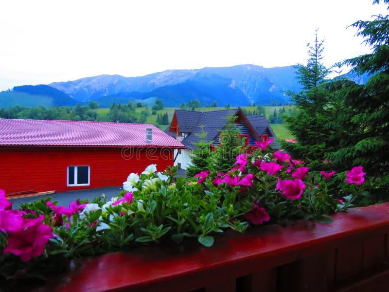 Blumen, summerhouse und Berge, Slowakei stockbilder