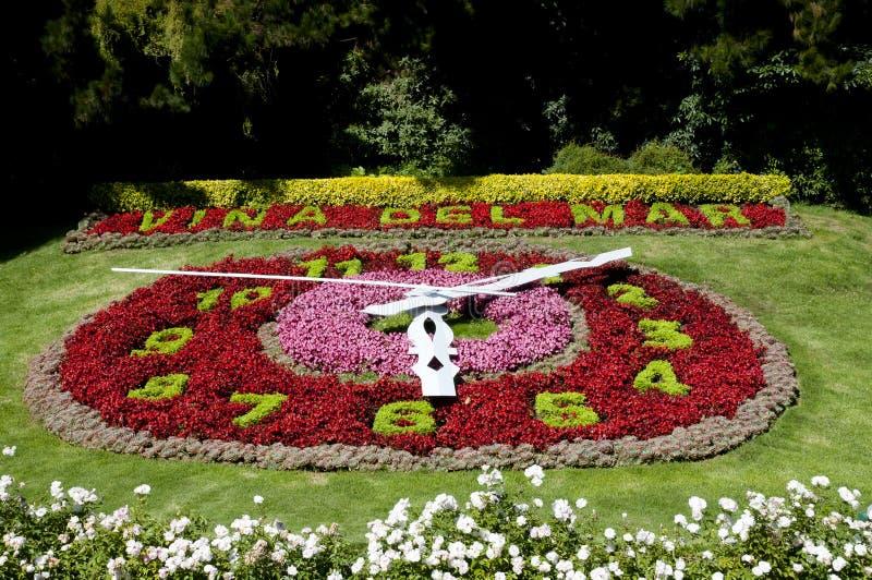 Blumen-Uhr - Vina Del Mar - Chile lizenzfreies stockbild