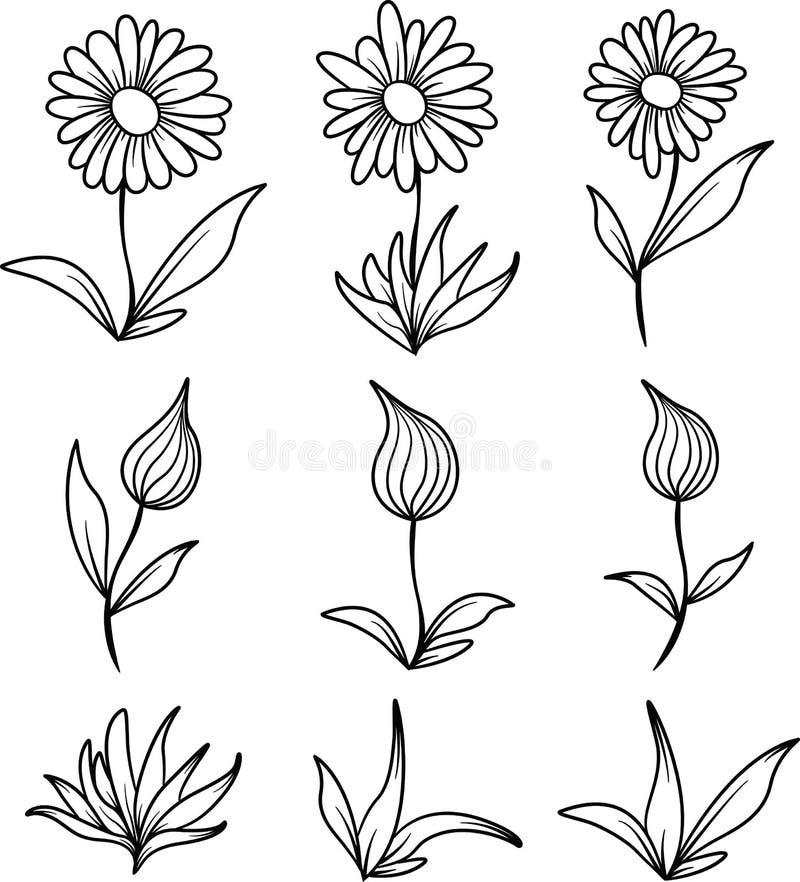 Blumen-und Blatt-Linie Kunst lizenzfreie stockfotografie