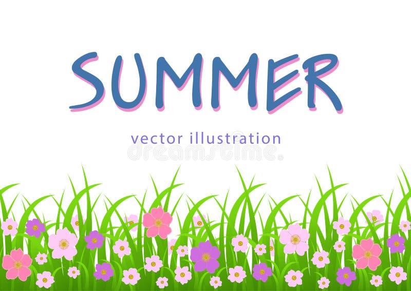 Blumen und Grasgrenze, Sommerillustration, Grußkarte, Abdeckung, Plakat, Fahne mit rosa Wiesenblumen und Grün vektor abbildung
