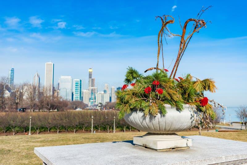 Blumen und Kiefern-Niederlassungen in einem Pflanzer mit See-Ufer-Antrieb und den Chicago-Skylinen lizenzfreies stockfoto