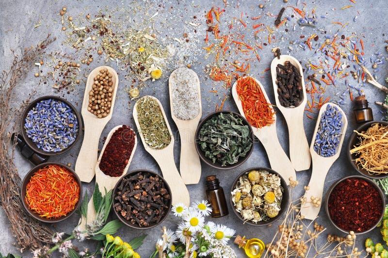 Blumen und Kräuter für Alternativmedizin, Gesundheitswesenhintergrund lizenzfreie stockbilder