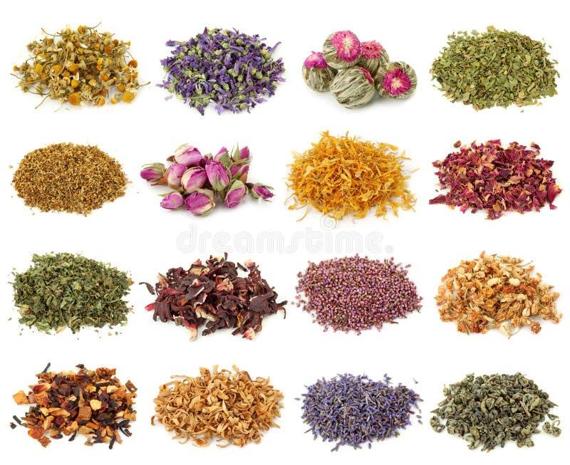 Blumen- und Kräuterteeansammlung lizenzfreies stockfoto