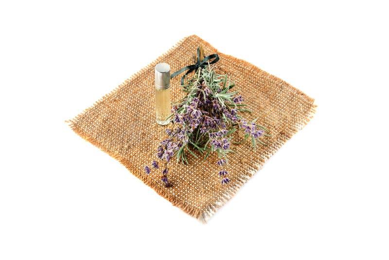Blumen und Lavendelöl lokalisiert auf weißem Hintergrund lizenzfreies stockbild