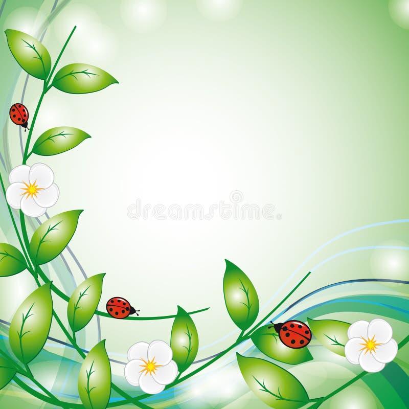 Blumen und Marienkäfer vektor abbildung