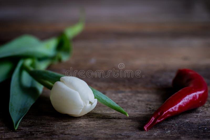 Blumen und Pfeffer stockbild