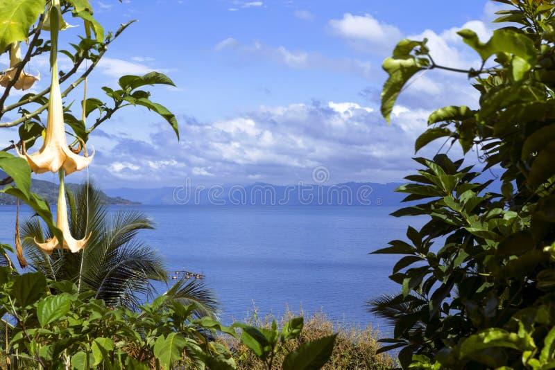 Blumen und See Toba. stockbilder