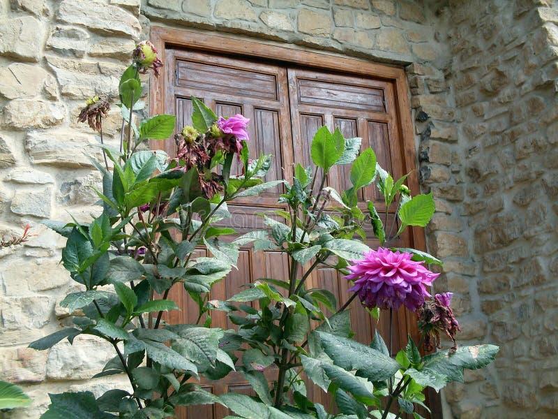 Blumen und Tür der Kirche, Leymebamba, Chachapoyas, Amazonas, Peru, Südamerika stockfoto