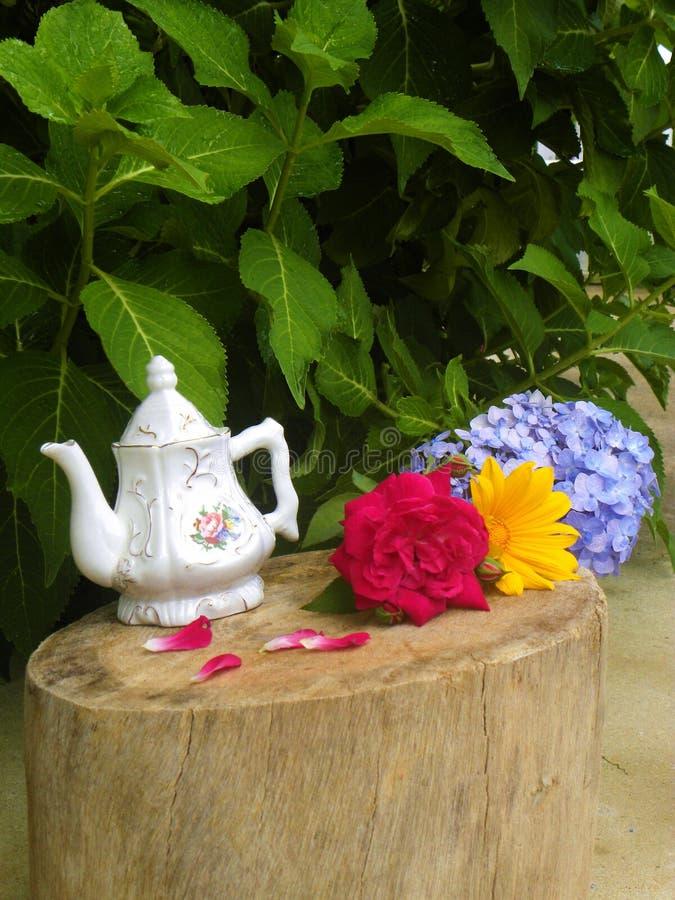 Blumen und Teetopf stockbilder