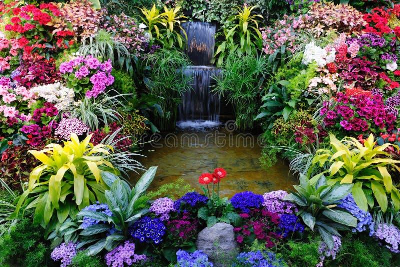 Blumen und Wasserfall lizenzfreies stockbild
