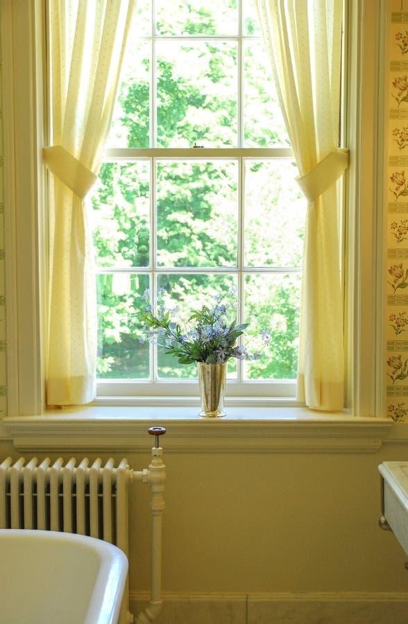 Blumen-Vasen-altmodisches Badezimmer Redaktionelles Stockfoto - Bild ...