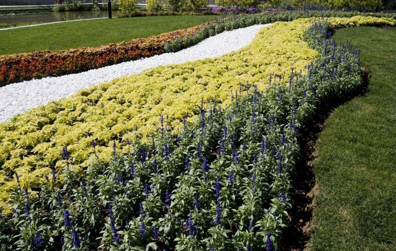Blumen verzieren lizenzfreie stockfotos
