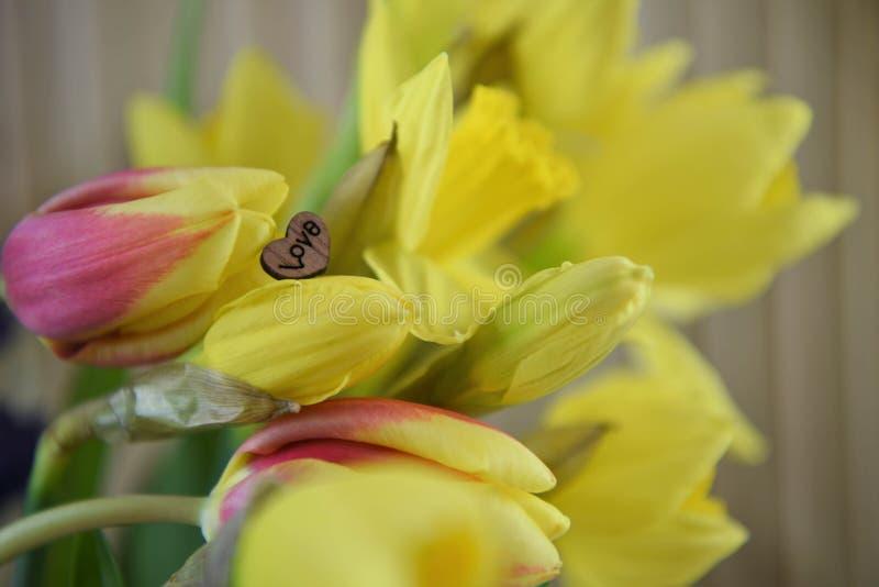 Blumen von gelben Narzissen und von roten Tulpen mit Liebesherzdekoration lizenzfreie stockfotografie