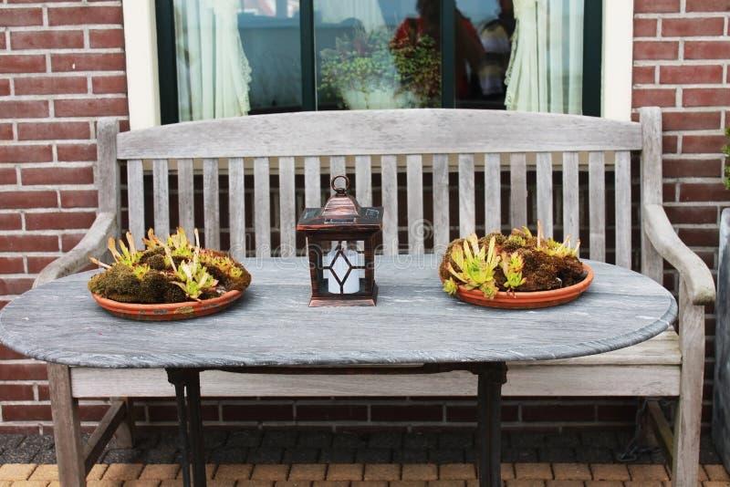 Blumen vor Hausschreibtisch lizenzfreie stockbilder