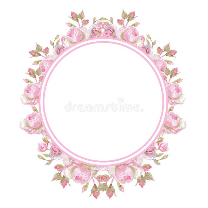 Blumenabbildung der weinlese frame Heller weißer Hintergrund stockfotografie