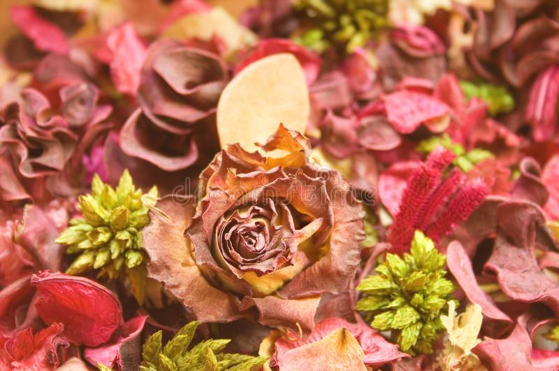 Blumenbackround lizenzfreies stockbild