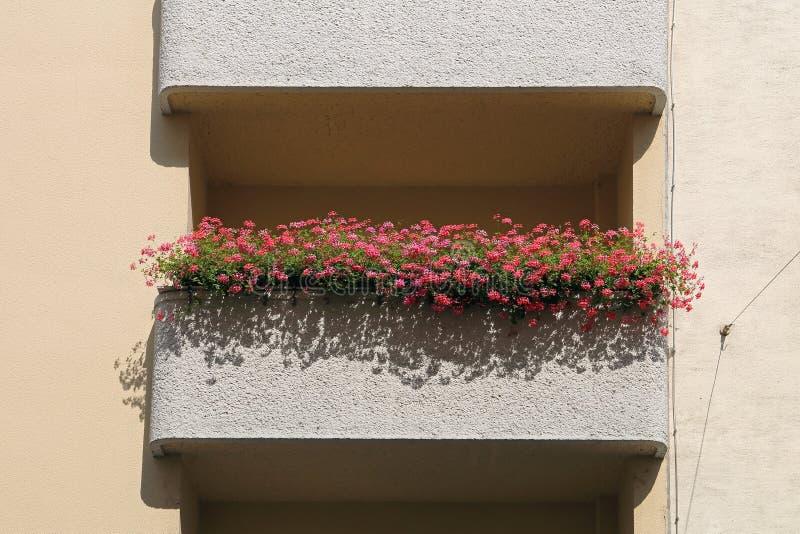 Blumenbalkon Wien lizenzfreie stockfotos