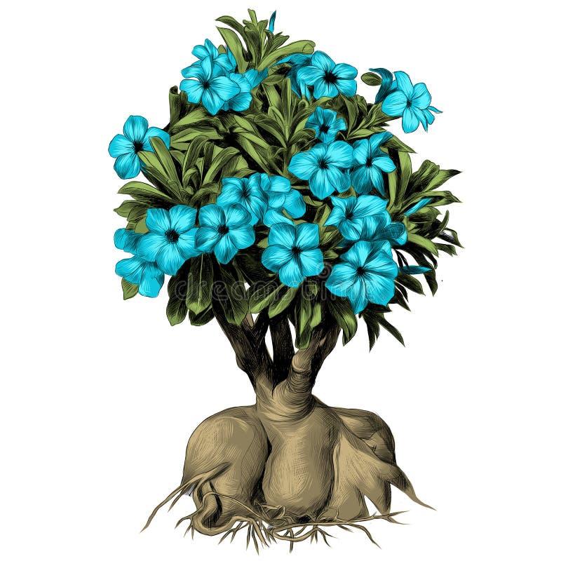 Blumenbaum Adeniumwüstenrose-Skizzenvektor lizenzfreie abbildung