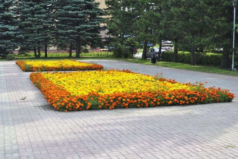 Blumenbeet im Stadt Park stockbilder