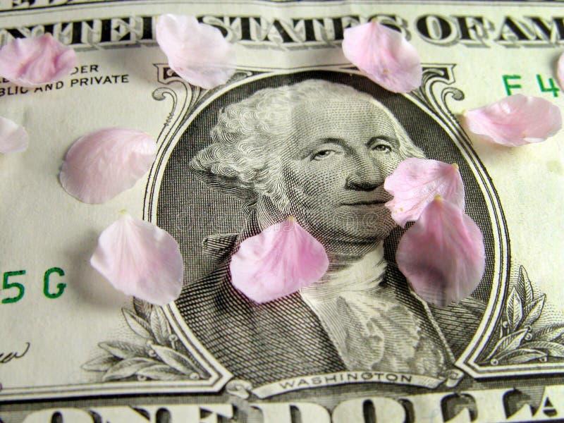 Blumenblätter auf dem Dollarschein lizenzfreies stockfoto